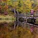 Fall Colors - Madeline Island, WI