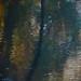 Reflet de ma rivière sauvage...!!! by Denis Collette...!!!