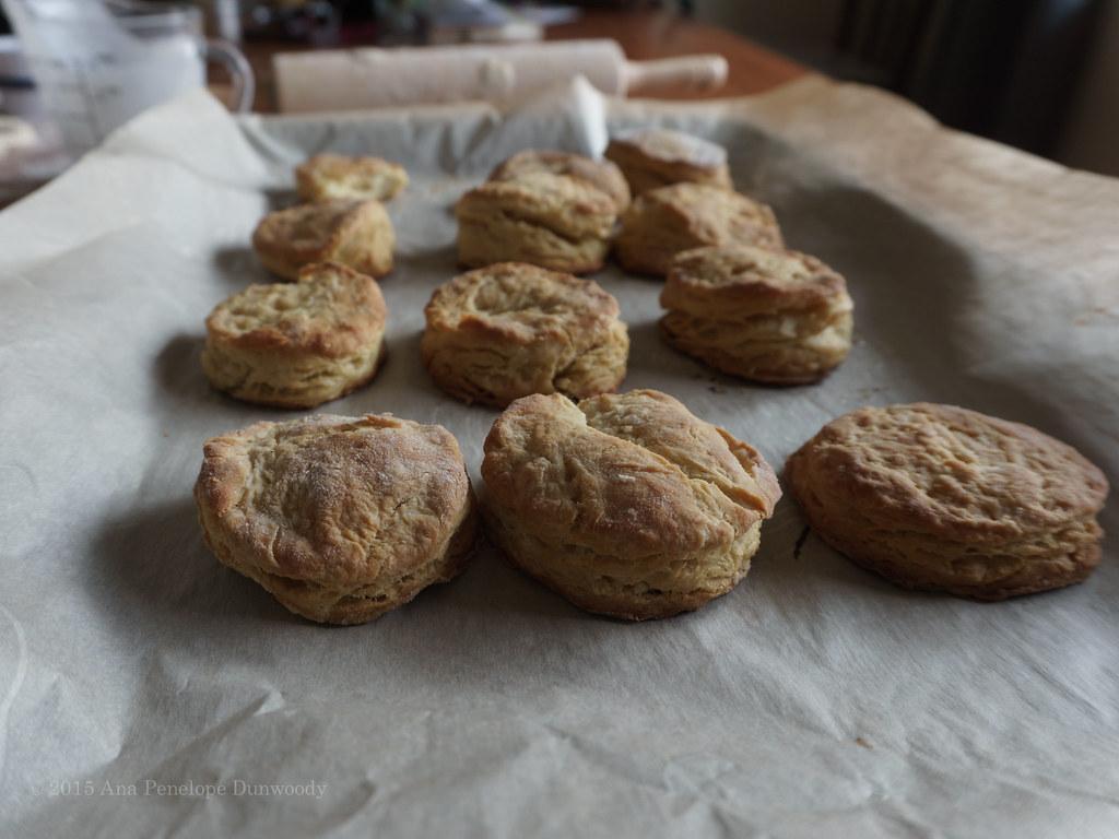Buttermilk Biscuits #7