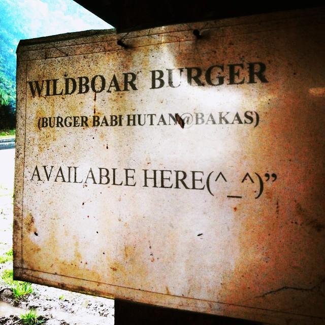 Wild boar burger.