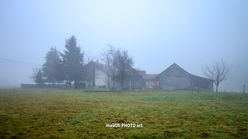house tree misty fog rural canon europe farm farming foggy croatia hrvatska agrictuture