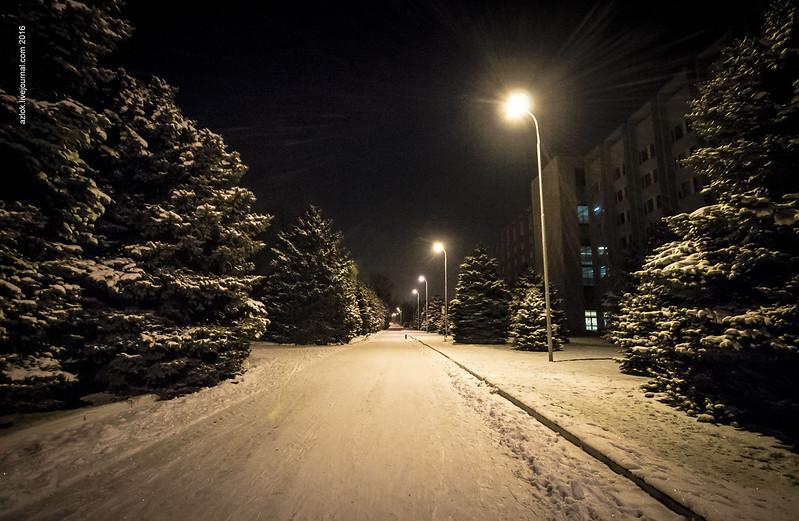 Аллея. Зима