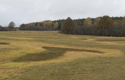 estonia valgacounty tahevaparish valgamaakond tahevavald panoramio