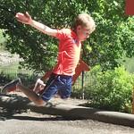 Can you jump further than a kangaroo?
