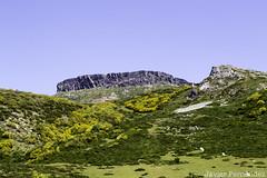 Peña Labra (2.018 m)