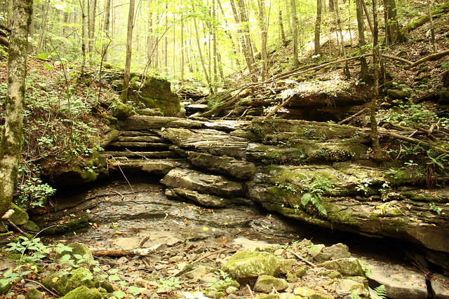20150829_New_River_Gorge_006