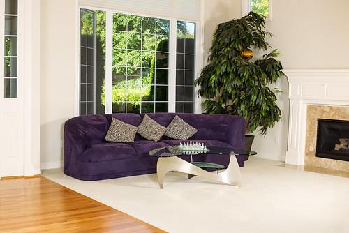 modern sofa and designer coffee table