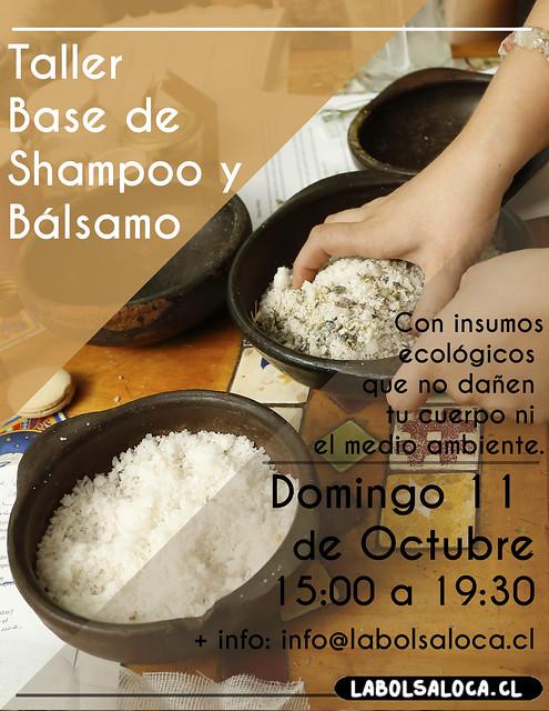 Base de shampoo y balsamo octubre