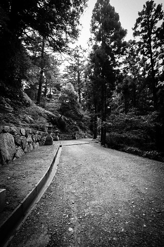 IMG_3079_LR__Kyoto_2015_09_04