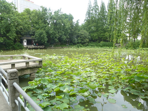 CH-Hefei -Bao Park (2)