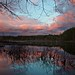 When Heaven Met Earth by StarrGazr