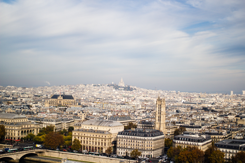 view to the north with sacre coeur