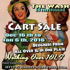 Bi Annual Wash Sale - Dec15 Poster