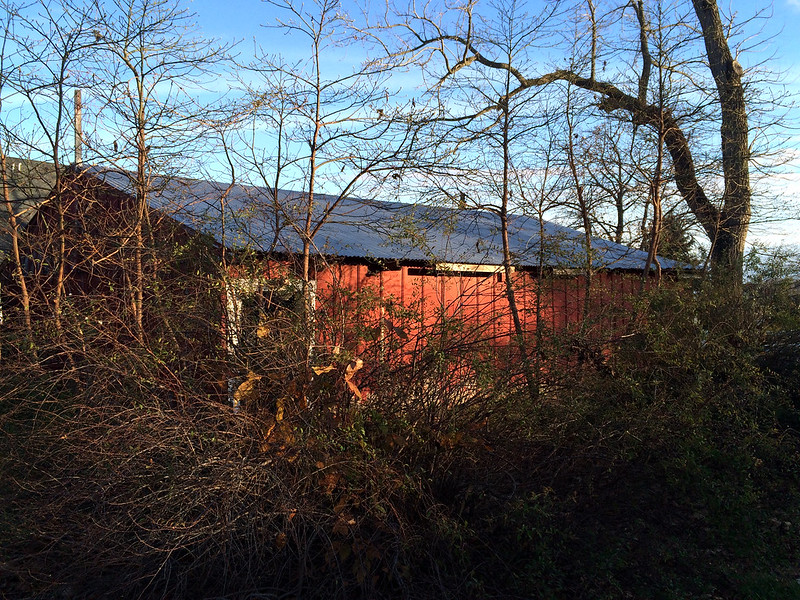 November Light on the Red Barn