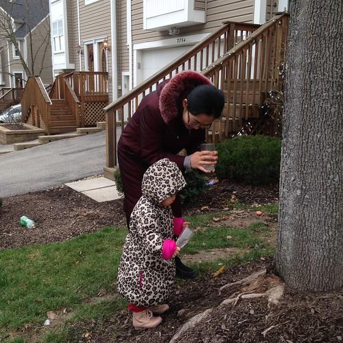 Remembering Khun Bu. Watering a tree