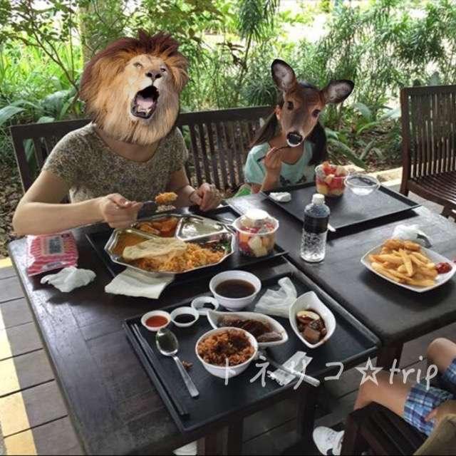 シンガポール動物園で昼食