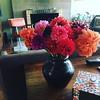 #dalias #hantzhouse #flowers