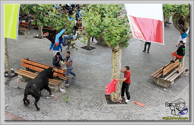 Briviesca en Fiestas 2.015 Segundo encierro Sopas de ajo y encierro infantil (7)