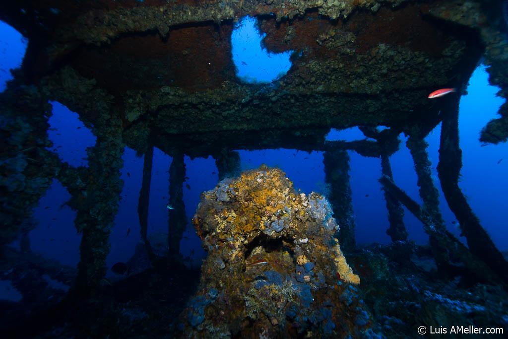 Francisquita | Menorca