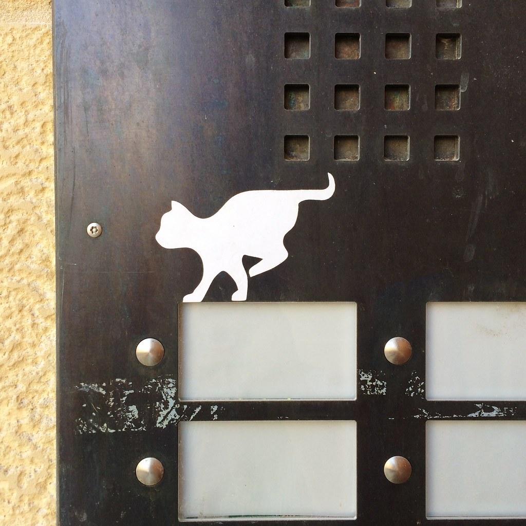 Cat's domain