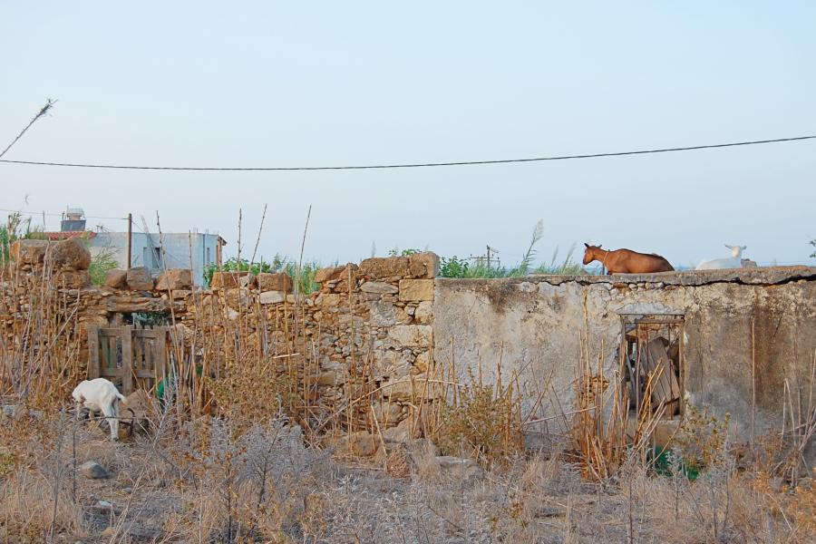 Greece-Crete (20)