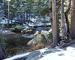 Spring comes to Tuolumne River, Yosemite 5-15