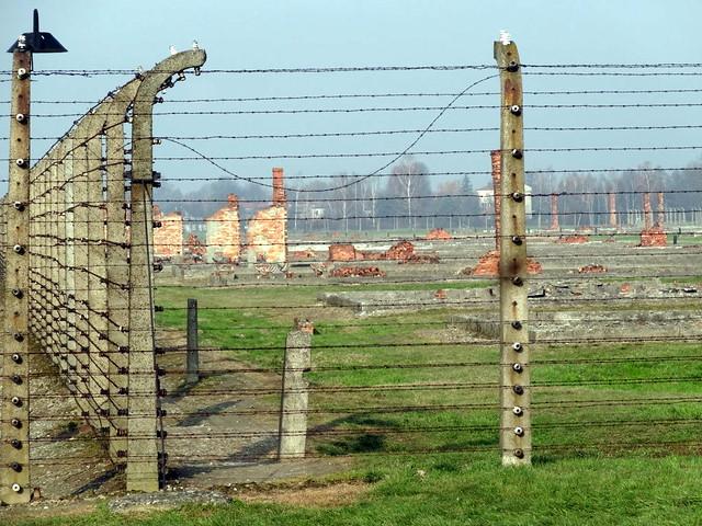 Auschwitz Birkenau (66)