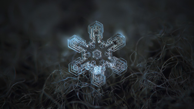 Snowflake wallpaper, Ultra HD 4K: Alioth - real snow crystal with complex inner pattern, glowing on dark grey textured background