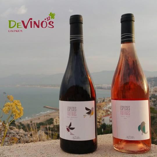 DEVINOS-DIVINOS-ESPECIES-Nativas-Todo-Irá-bien-09-12-2015