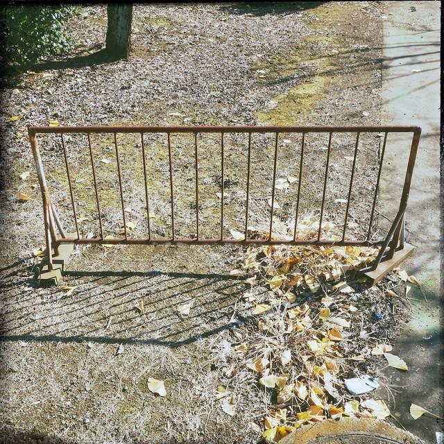 Rusty iron fence