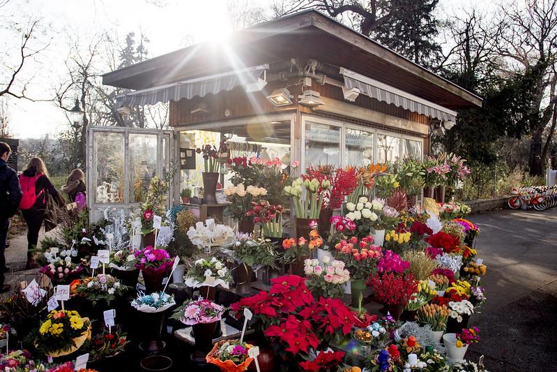 Traditional street florist - Vienna, Austria