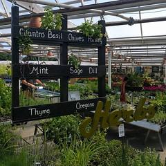 #TBT #herbs #pallet #chalkboard #planter #sign #Molbaks #nursery #Woodinville