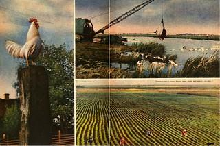 Огонек 1961-34_22