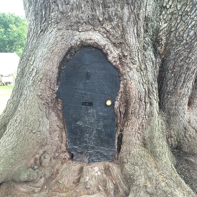 Fairy door tree Hampton Court