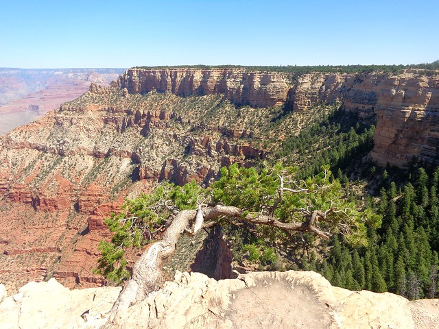 Yaki Point, South Rim of the Grand Canyon