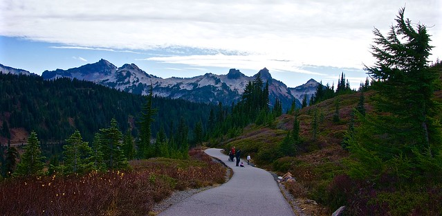 Hiking in the Mount Rainier National Reserve