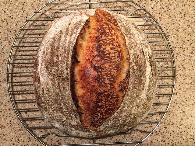 Basic Country Loaf w/ Whey