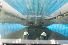 London Aquatics Centre, Zaha Hadid