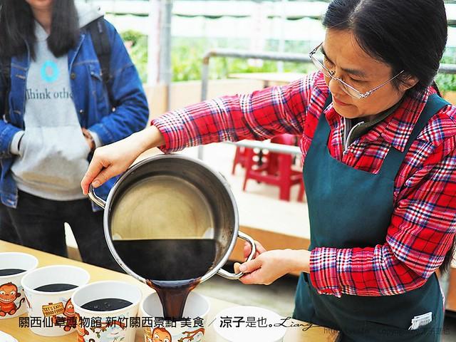 關西仙草博物館 新竹關西景點 美食 18