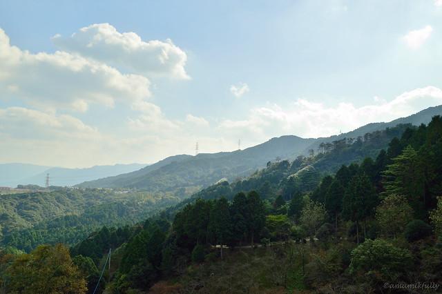 中央展望台からの眺め_油山市民の森