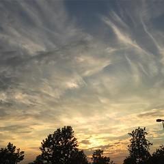 10 November 2016 #sunset not #samespotforayear #vso #vsocam #nofilter #latergram