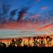 Last Summer Sunset (09 20 2015) by PhotoDocGVSU