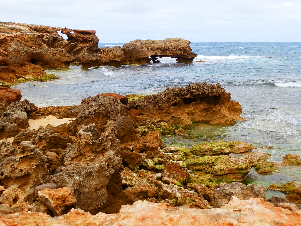 Nora Creina Coastline, Limestone Coast Attractions, South Australia