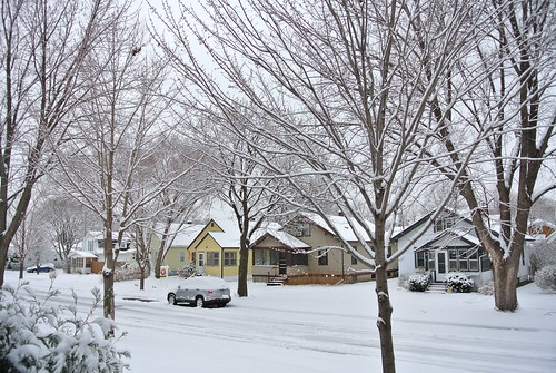 first snow 2015 (8)