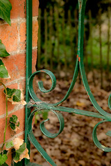 Ivy and Gate