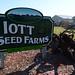 Iott Seed Farms