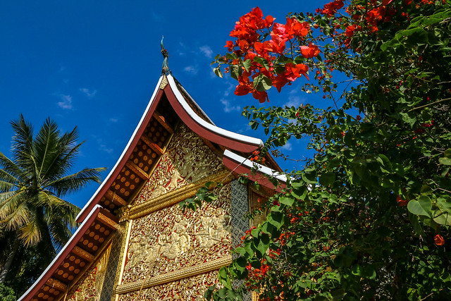 Wat Xieng Thong with Bougainvillea, Luang Prabang, laos ルアンパバーン、ワット・シェントーンとブーゲンビリア