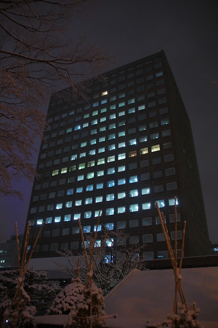 札幌市役所本庁舎 クリスマスツリー_01