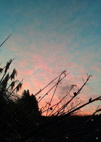 morning sky clouds sunrise dawn утро newday рассвет