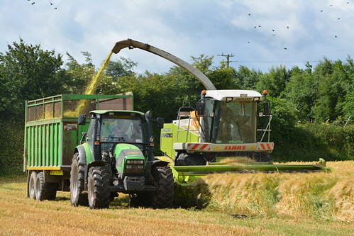 Claas Jaguar 870 SPFH filling a Thorpe Trailer drawn by a Deutz Fahr Agrotron 120 Tractor